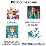 Plateforme-apeea-PPT-V6-du-27-11-2019-300x291