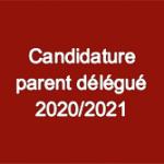 Candidature parent Délégué 2020 - 2021 - pour appeanet